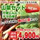 【山菜の王様】北海道産天然★行者にんにく&タラの芽/各500g合計1kgセット