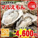 厚岸町からプリップリの牡蠣をお届け 北海道厚岸産殻付牡蠣 マルえもん    LLサイズ   10個入