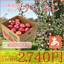 りんご 訳あり自家用 サンふじ10キロ(25玉〜45玉前後) 送料無料(本州・北海道) 山形県産 たっぷり10キロでこの価格!美味しいりんごはいかがですか? 1...