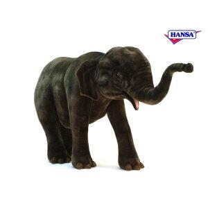 HANSA 5321 アジアゾウ180 全長:180cm ASIAN ELEPHAN