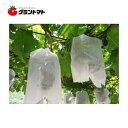 Sブドウ袋 4号 158×230 100枚入り ぶどう栽培用 果実袋 柴田屋加工紙