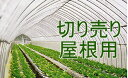 キリヨケバーナル切り売り 0.1mm×400cm×1m 農PO【ビニールハウス】【取寄商品】【受注生産】
