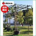 フルーツパーゴラL 果樹用棚支柱セット 【メーカー直送】
