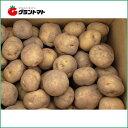 北海道産 じゃがいも種子 キタアカリ(北あかり)10kg箱【種ばれいしょ検疫合格証票付き】
