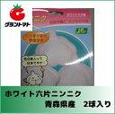 青森県産 ホワイト六片ニンニク種子 2球入り【野菜球根】