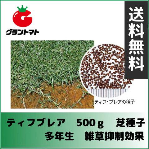 ティフ・ブレア 500g 芝の種(センチピードグラス)多年生 タキイ種苗【取寄商品】【ゆうパケット可】
