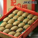 【JA紀の里】紀の姫キウイフルーツ 約3.6kg 24玉 紀州 和歌山県産