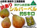 【訳あり】【送料無料】【8〜16玉・約5kg(キロ)】【山形...