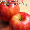 【加工用】【送料無料】山形県産 無選別 サンふじ りんご 5kg [加工用りんご5キロ]