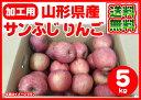 【ポイント10倍】【加工用】【送料無料】山形県産 無選別 サンふじ りんご 5kg