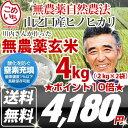 【完全無農薬 玄米】 ヒノヒカリ 玄米 4kg(2kg×2袋)28年宮崎県 山之口産 (産地直送)