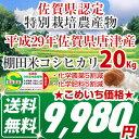 【減農薬】 29年 佐賀県産 棚田米コシヒカリ 20kg <...