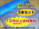 シンセイ 防風ネット 防風網 (青)4mm目 2m×50m (5本セット) 農業資材 園芸用品 家庭菜園