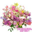 スイートピー 生花アレンジメント    春の花