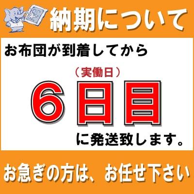 羽毛布団クリーニング2枚パック +2160円で...の紹介画像2