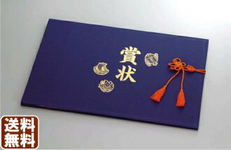 Lateral file 10P02jun13 Deluxe Navy certificate of merit album