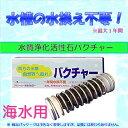 海水用バクチャー60L用水質調整材・水質浄化材水換え最大1年