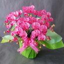 胡蝶蘭-ピンク 5F高さ50cm×巾40cm造花・光触媒