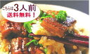 浜名湖うなぎのあいかね本日『うなぎ茶漬け』の日ひつまぶし&うなぎ茶漬け(うなぎ70gと薬味のセット)