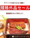 浜名湖うなぎのあいかね<規格外品>国産うなぎ蒲焼1匹(焼き上...
