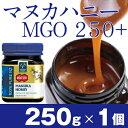 マヌカヘルス社 マヌカハニー MGO250+ 250g【楽天...