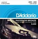 【ポイント2倍】【メール便・送料無料・代引不可】【2セット】D'Addario ダダリオ EJ69 5弦 バンジョー弦 Phosphor Bronze【smtb-TK】