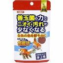 イトスイ コメット 金魚の主食納豆菌色揚げ 40g