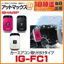Ig-fc1_1
