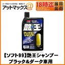 【SOFT99 ソフト99】洗車 シャンプー艶王シャンプー ブラック&ダーク車用【04258】