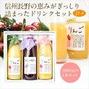ジュース・ドリンク 3本 ギフト セット(J3-4)(りんご・果肉入りすりおろしりんご・ブルーベ