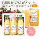 果汁100% ジュース (J3-1)(りんご・果肉入りすりお...