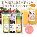 果汁100% ジュース・ドリンク 3本 ギフト セット(J3-7)(ラ・フランス・ブルーベリー・りん