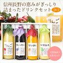 果汁100% ジュース・ドリンク 4本 ギフト セット(J4...