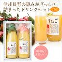 果汁100% ジュース2本セット(J2-2)(りんご・果肉入...