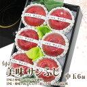 【厳選 美味 赤 りんご ギフト】サンふじ【大玉 6個入】(長野産・青森産・秋田産・岩手産)