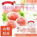 【予約商品】母の日 ハウス桃(山梨産)(5〜6玉入) 【のし・メッセージカード ギフト 包装可】お祝 プレゼント 誕生日 ギフト もも モモ 桃 Peach おいしい桃 果物・フルーツ くだもの