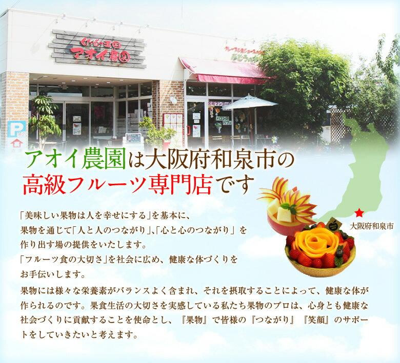 「マスクメロン アドバイザーお勧め!」【静岡県...の紹介画像2