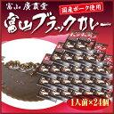 【まとめ買い】富山ブラックカレー 24個セット ご当地
