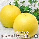 晩白柚 ばんぺいゆ 熊本県産みかん L寸 2玉 化粧箱入り 送料無料