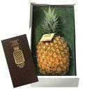 ゴールドバレル パイン パイナップル 沖縄県東村産 特A品(大玉サイズ) 1玉 約1.7kg以