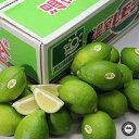 国産レモン 約5kg 高知県山北町産 温室ハウス栽培 送料無料(フルーツ ギフト 贈答用 内祝い お見舞い 還暦祝い)