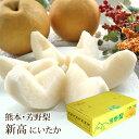 新高梨(にいたかなし) 熊本県産 約5kg(7〜9玉入り) 送料無料 芳野の日本梨