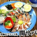 関さば(関鯖) 姿造り(お造り) 佐賀関漁港認定の一流ブランド魚 冷蔵便 産地直送