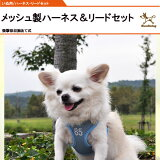 【レビューを書くとメール便】通気性確保,衝撃を和らげる優しい犬 ハーネスリードセット【小型犬・中型犬】【あす楽対応】【RCP】P27Mar15