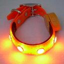 【送料無料】光る首輪LEDカラーお散歩ライト(オレンジ)(XS〜Lサイズ)【あす楽対応】