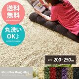 【タイムセール対象商品】ラグ 洗える ラグマット マット シャギーラグ カーペット 北欧 200×250 グリーン 長方形 センターラグ 新生活 シンプル 絨毯 じゅうたん ダイニ