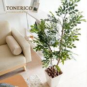 光触媒 観葉植物 大型 インテリア 観葉植物 トネリコ 人工植物 造花 消臭 抗菌 V-CAT 空気清浄 高さ120cm お手入れ不要 おしゃれ かわいい 人気 光触媒人工植物 トネリコ120cm