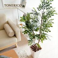 【送料無料】観葉植物、光触媒、人工植物、ミドルサイズ、消臭、抗菌日常に触媒媒とグリーンの癒しを光触媒人工植物トネリコ120cm