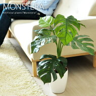 【送料無料】日常に触媒媒とグリーンの癒しを光触媒人工植物モンステラ