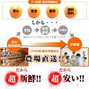 令和2年度産<徳島県産こしひかり>玄米25kg 【送料無料!一部地域を除く】新米
